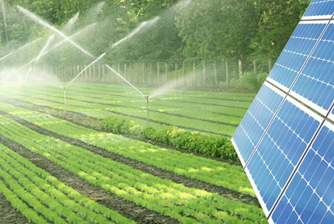 shinko solar and boreholes water pumps